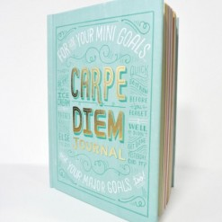 Notitieboek Carpe Diem