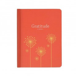 Dankbaarheid dagboek