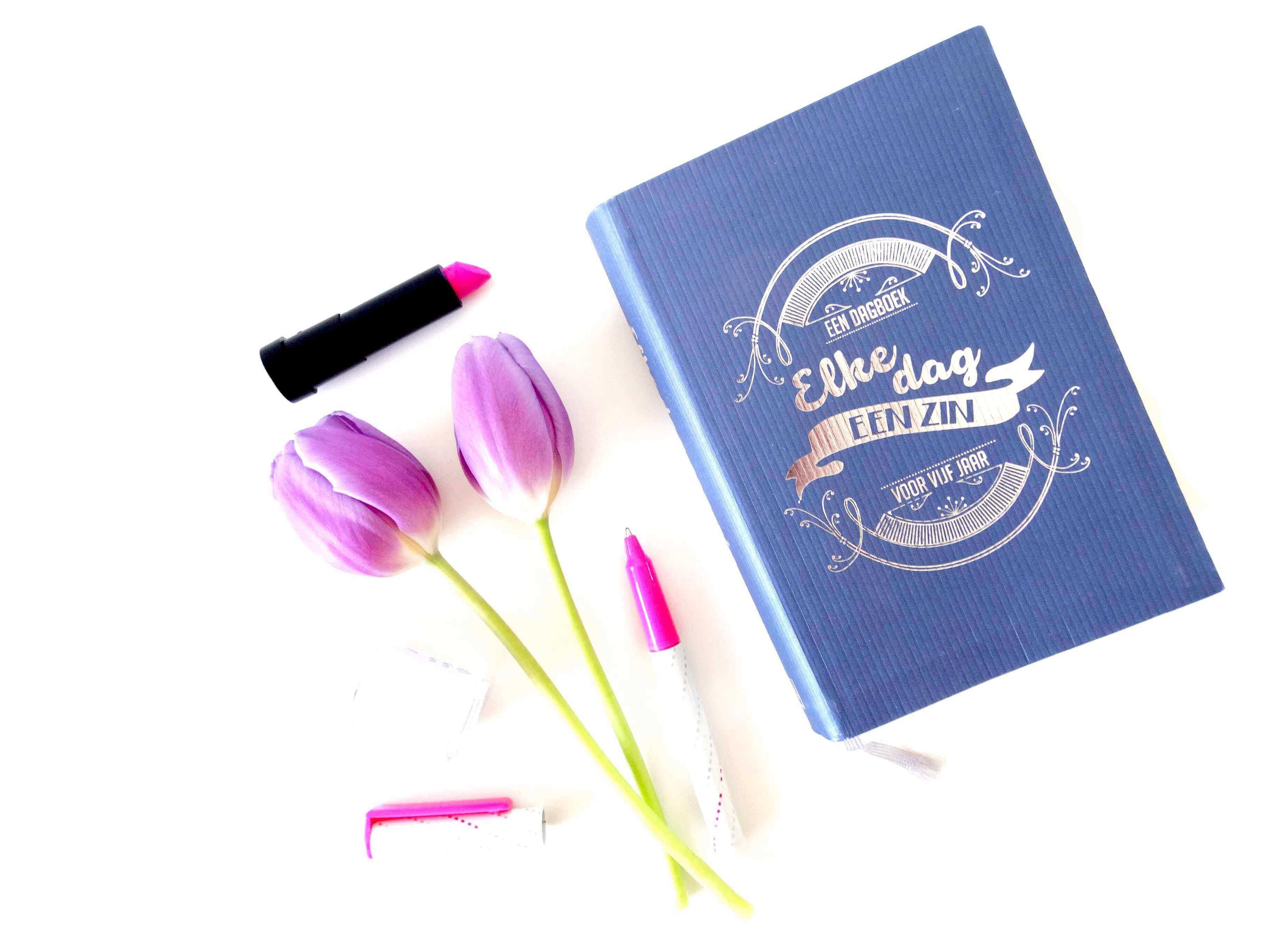 Waarom ik zou willen dat ik goed was in dagboek schrijven