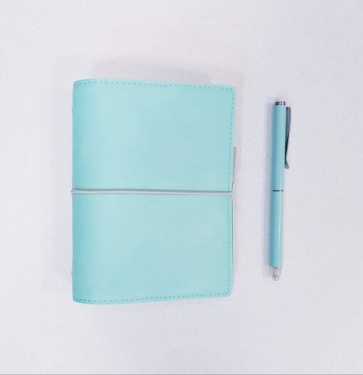 Filofax-organizer-domino-soft-pocket-duck-egg-2