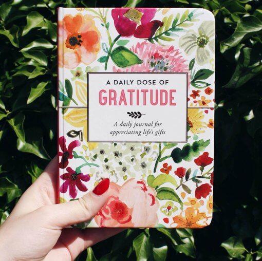 Peter Pauper Press notitieboek A Daily Dose of Gratitude 1
