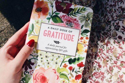 Peter Pauper Press notitieboek A Daily Dose of Gratitude 2