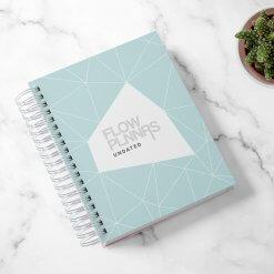 Flow Planner - Mint Geo