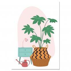 Anischtkaart plant