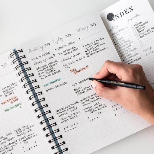 Balans-planner-binnenkant-agenda