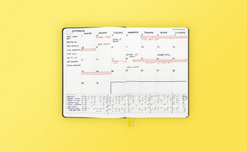 Best SELF Planner Coral 2
