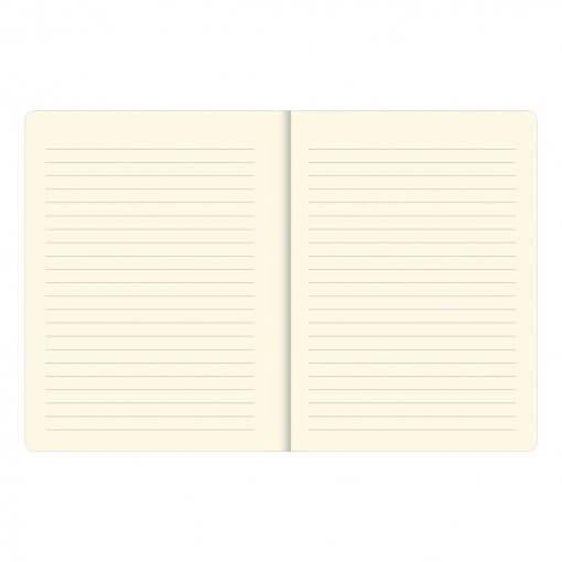 Peter Pauper Press notitieboek You Got This 1