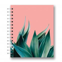 Studio oh Spiraal medium Agave on Coral