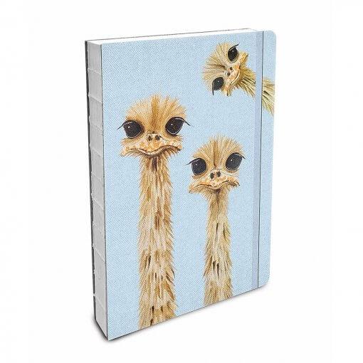 Studio oh Notebook Ostriches